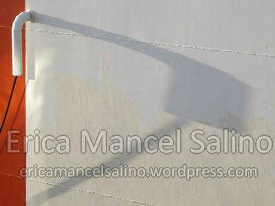 IMG_1119 Erica Mancel Salino 11 novembre 2013 Filirgrane 72dpi