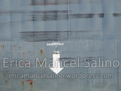 IMG_1174 Erica Mancel Salino 11 novembre 2013 Filirgrane 72dpi