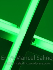 IMG_8002 Erica Mancel Salino mai 2016 Filirgrane 72dpi