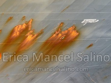 img_1158-erica-mancel-salino-11-novembre-2013-filirgrane-72dpi